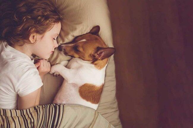 young girl sleep with pet